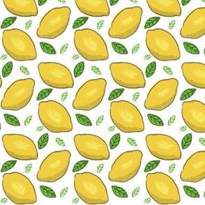 Lemons med-small