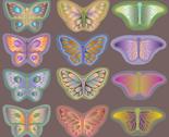 Rrrrbutterflies_rainforest_thumb