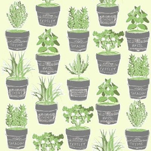 herbs in chalkboard pots - green background