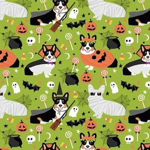 Tri-Colored Corgi halloween costumes mummy vampire ghost just dog fabric light green