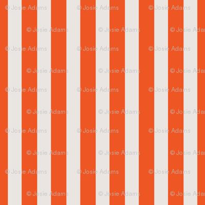 Orange Creamcicle