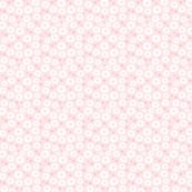 R6_starfish-and-sanddollar-600_shop_thumb