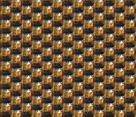 034 Glacier National Park Scene fabric by forsythiaforcynthia on Spoonflower - custom fabric