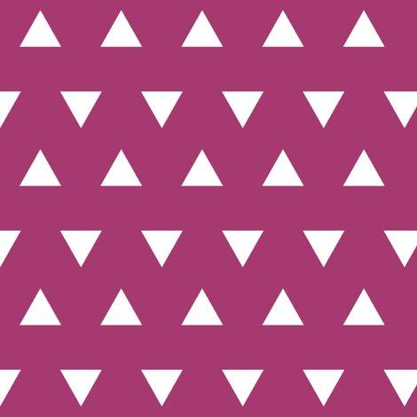 R00-white-triangle-raspberry_shop_preview