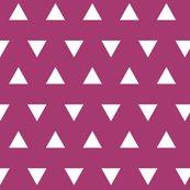 R00-white-triangle-raspberry_shop_thumb