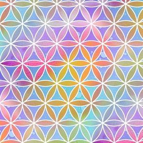 Rainbow Geo Flowers
