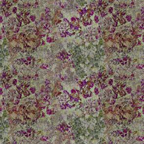 violet-jade-sienna