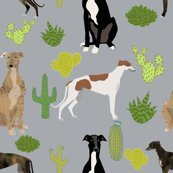 Rgreyhounds_cactus_grey_shop_thumb