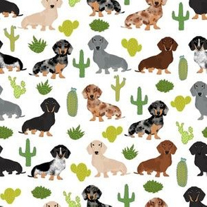 dachshund dog fabric dogs and cactus design - white