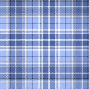 Dusty Blue Plaid