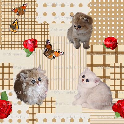 Kitten_Patchwork