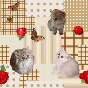 Kitten_Patchwork