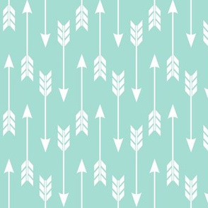 Arrows – Mint Arrow Run
