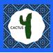 Cowboy Book Cactus