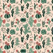Succulents desert