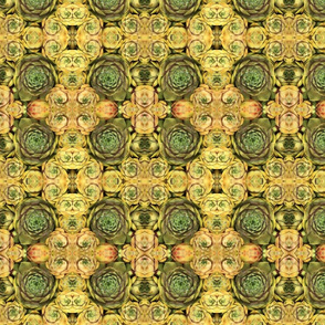 Yellow and Green Succulents 1671