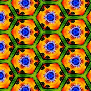 psychedelic_hexagons_3
