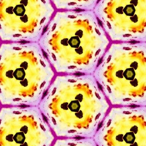 psychedelic_hexagons_6