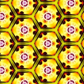 psychedelic_hexagons_7