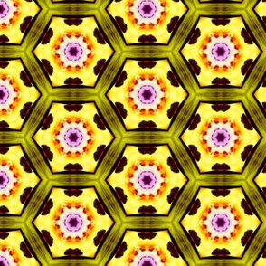 psychedelic_hexagons_9