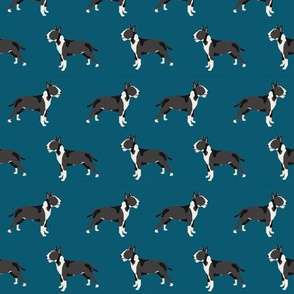 Bull Terrier standing simple dog pattern standing