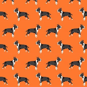 Bull Terrier standing simple dog pattern orange