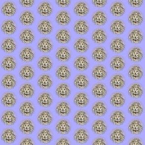 Silver Poodles