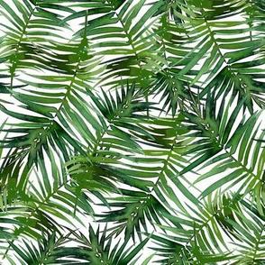 Wild_palms