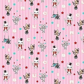 Circus Kittens Pink