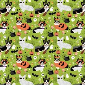 TriColored Corgi halloween costumes cute dog fabric