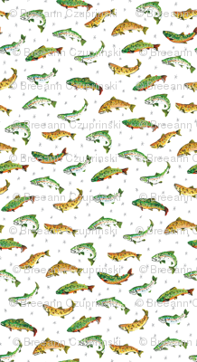 Trout Party: Rainbow, Brook, and Brown Trout