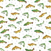 Fish_pattern_final_rgb_150dpi_shop_thumb