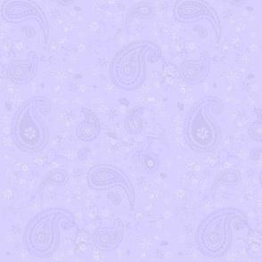 Paisley Lavender