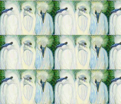 Rrrcrazyhairbirds-12x19_contest149902preview