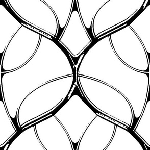 Carapace - black & white