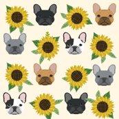 Rrfrenchie_sunflower_cream_shop_thumb