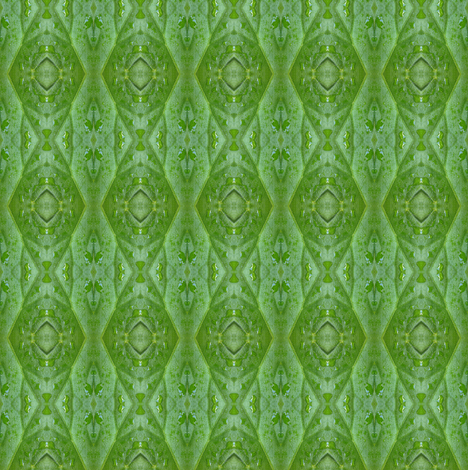 Water leaves macro large scale fabric by zandloopster on Spoonflower - custom fabric