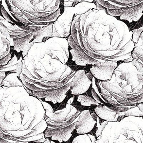 Roses Outline Black Upholstery Fabric