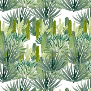 Palm_Desert