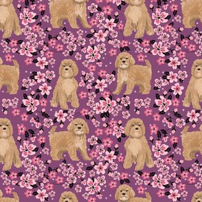Cavoodle cherry blossom spring floral cute cavapoo pattern amethyst