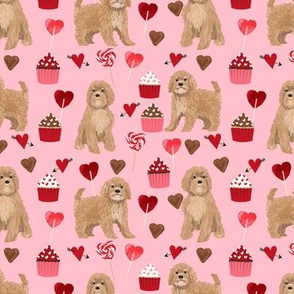 Cavoodlevalentines day cute cavapoo pattern pink