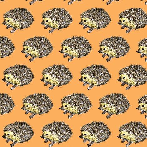 Rhedgehog_orange_shop_preview