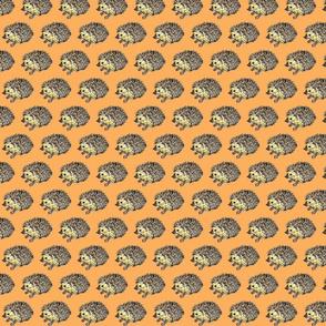 Hedgehog_orange
