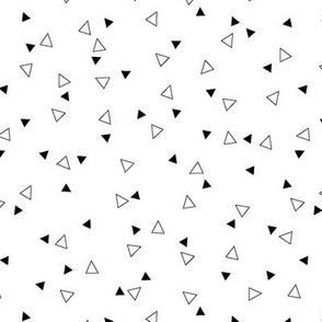 Triangle Coordinate