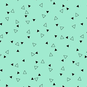 Triangle Coordinate (Mint)