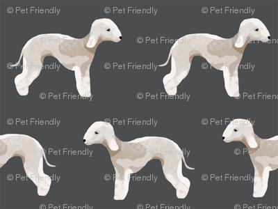 bedlington terrier fabric  dogs pet design - charcoal