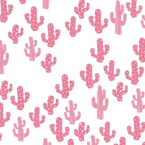 Pink cactus raw summer garden botanical cacti design