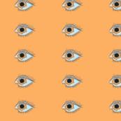 Rrrrreclipse_eye_shop_thumb