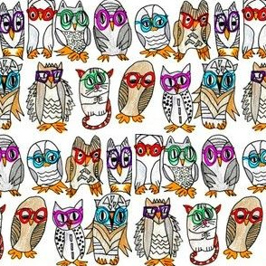 10 Owls and a Friend Wait for the Eclipse to Begin