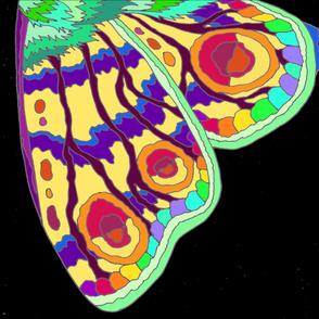 Rainbow Moth wings